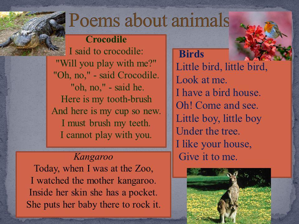 Poems about animals Birds Little bird, little bird, Look at me.