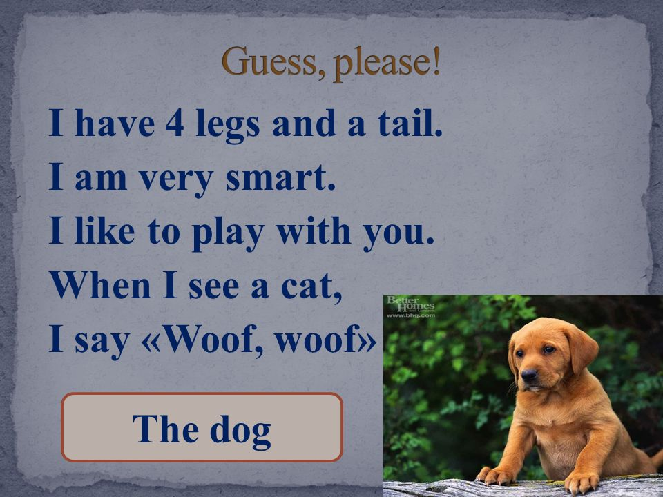 Guess, please! I have 4 legs and a tail. I am very smart. I like to play with you. When I see a cat, I say «Woof, woof»