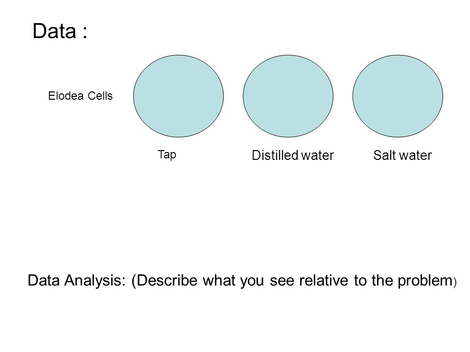 Data : Data Analysis: (Describe what you see relative to the problem)