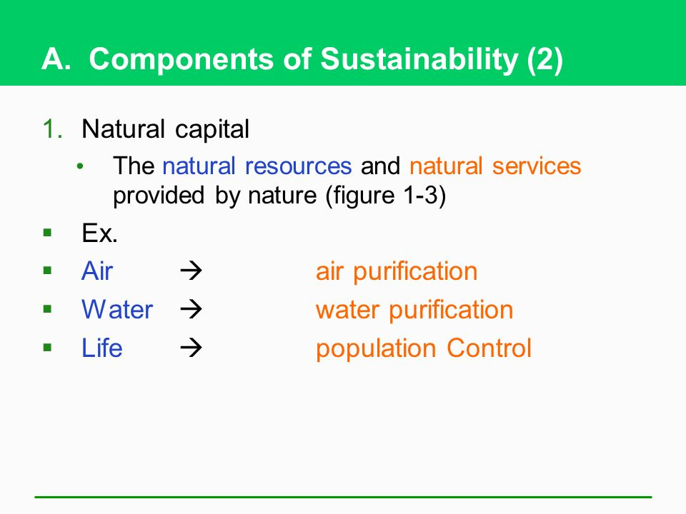 A. Components of Sustainability (2)