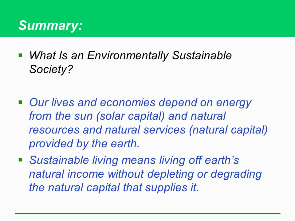 Summary: What Is an Environmentally Sustainable Society