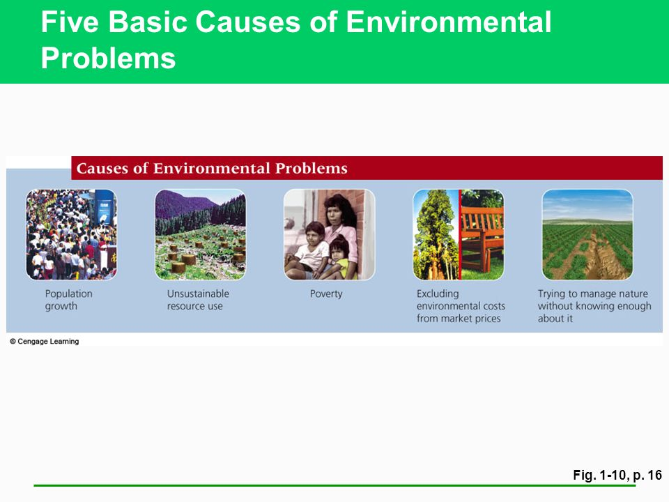Five Basic Causes of Environmental Problems