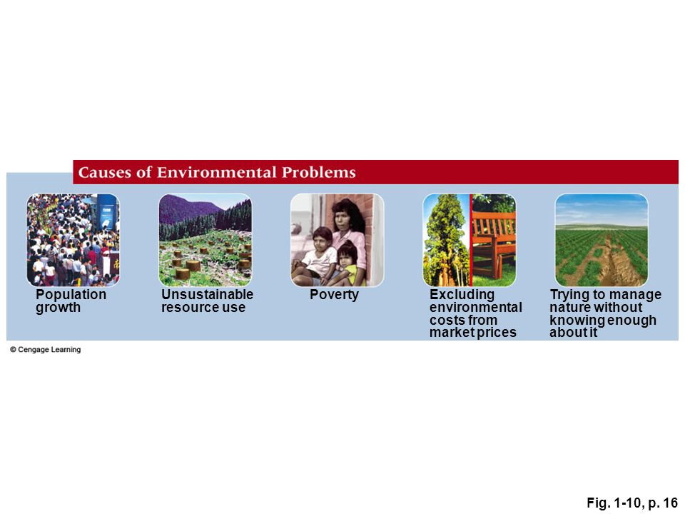 environmental costs from market prices