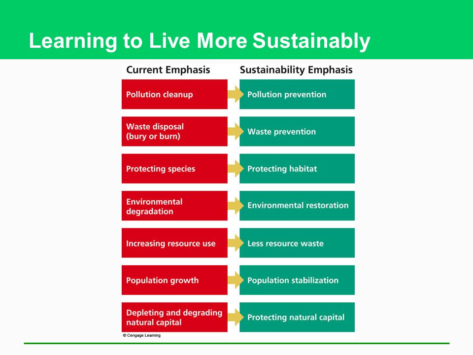 Learning to Live More Sustainably
