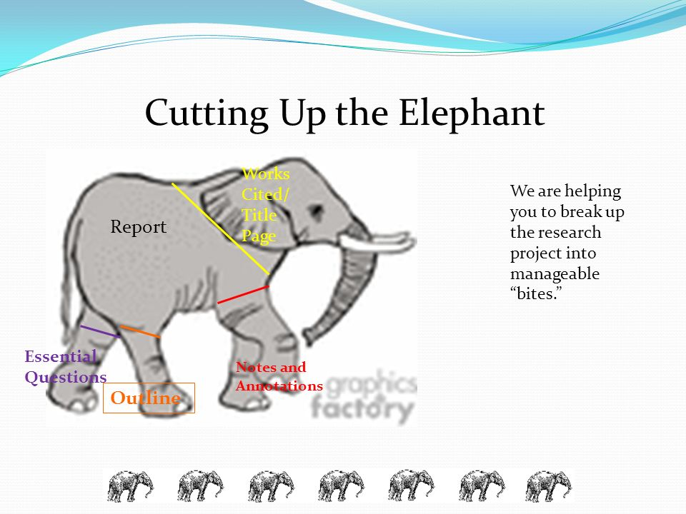 Cutting Up the Elephant