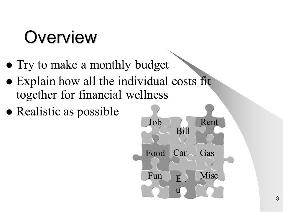 Overview Try to make a monthly budget
