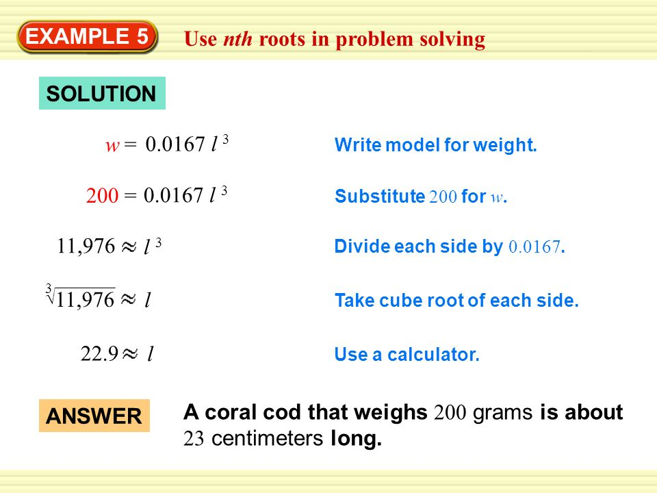 Use nth roots in problem solving
