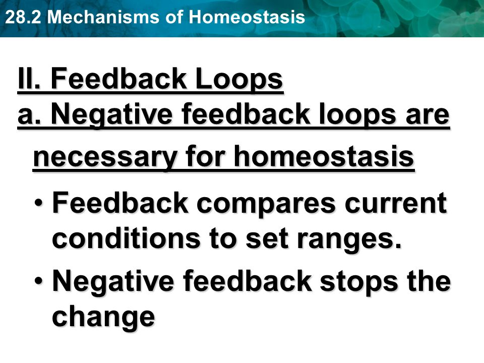 II. Feedback Loops a. Negative feedback loops are necessary for homeostasis. Feedback compares current conditions to set ranges.