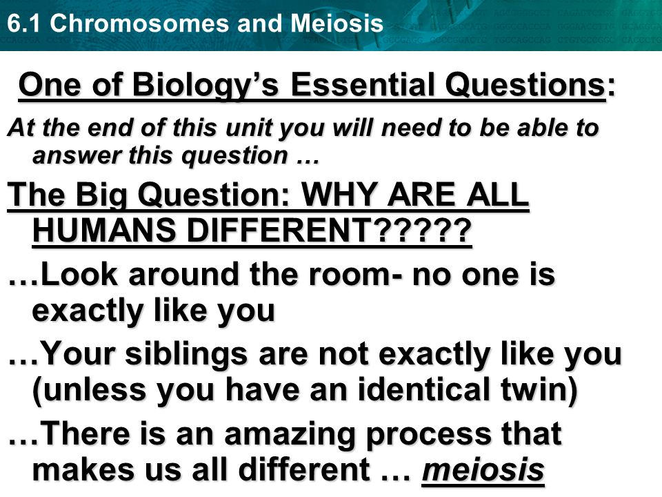 One of Biology's Essential Questions:
