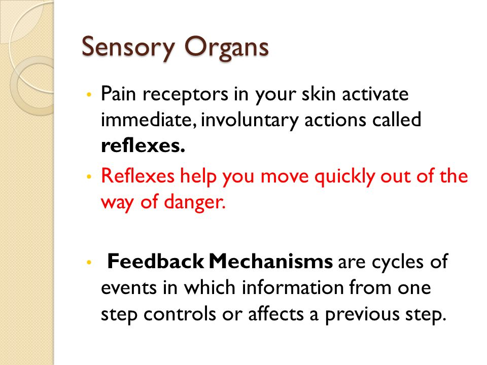 Sensory Organs Pain receptors in your skin activate immediate, involuntary actions called reflexes.