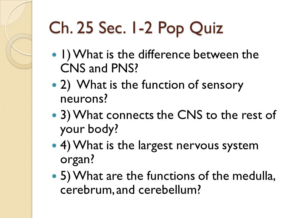 Ch. 25 Sec. 1-2 Pop Quiz 1) What is the difference between the CNS and PNS 2) What is the function of sensory neurons