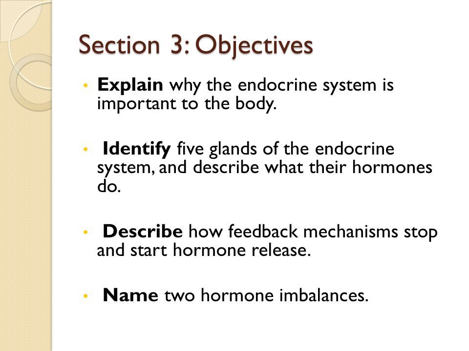 Section 3: Objectives Explain why the endocrine system is important to the body.