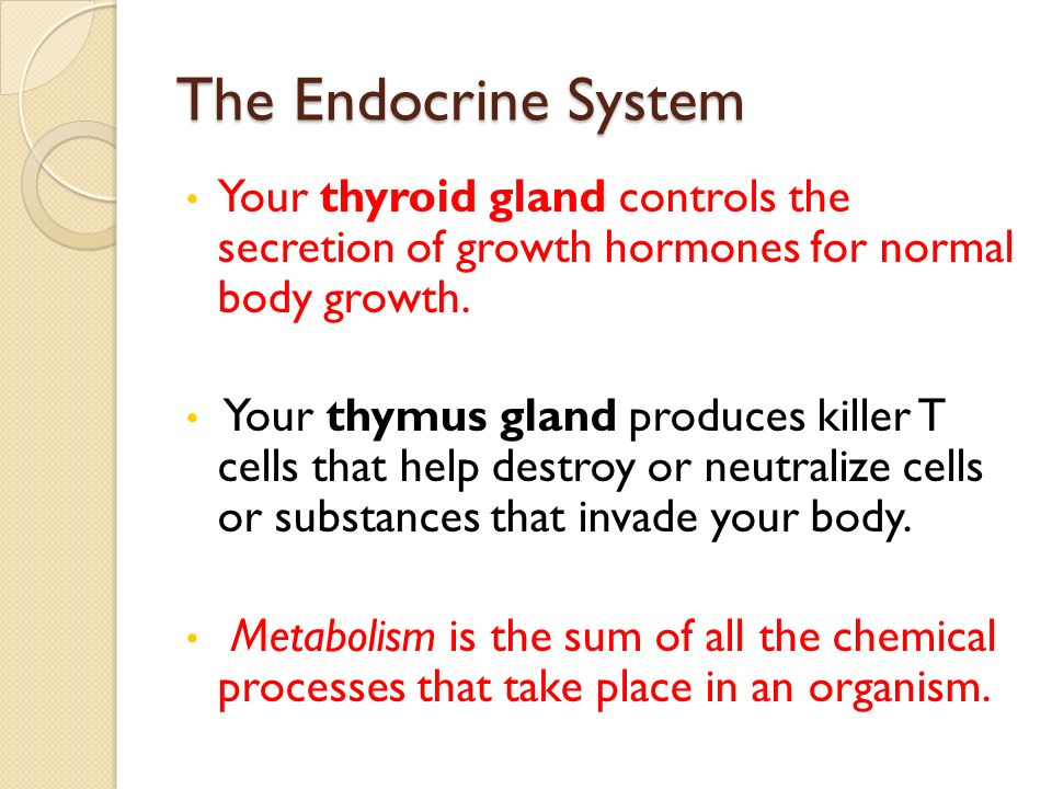 The Endocrine System Your thyroid gland controls the secretion of growth hormones for normal body growth.