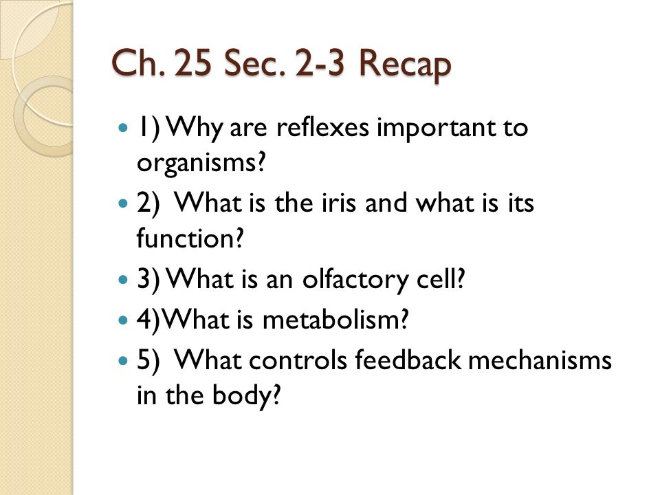 Ch. 25 Sec. 2-3 Recap 1) Why are reflexes important to organisms