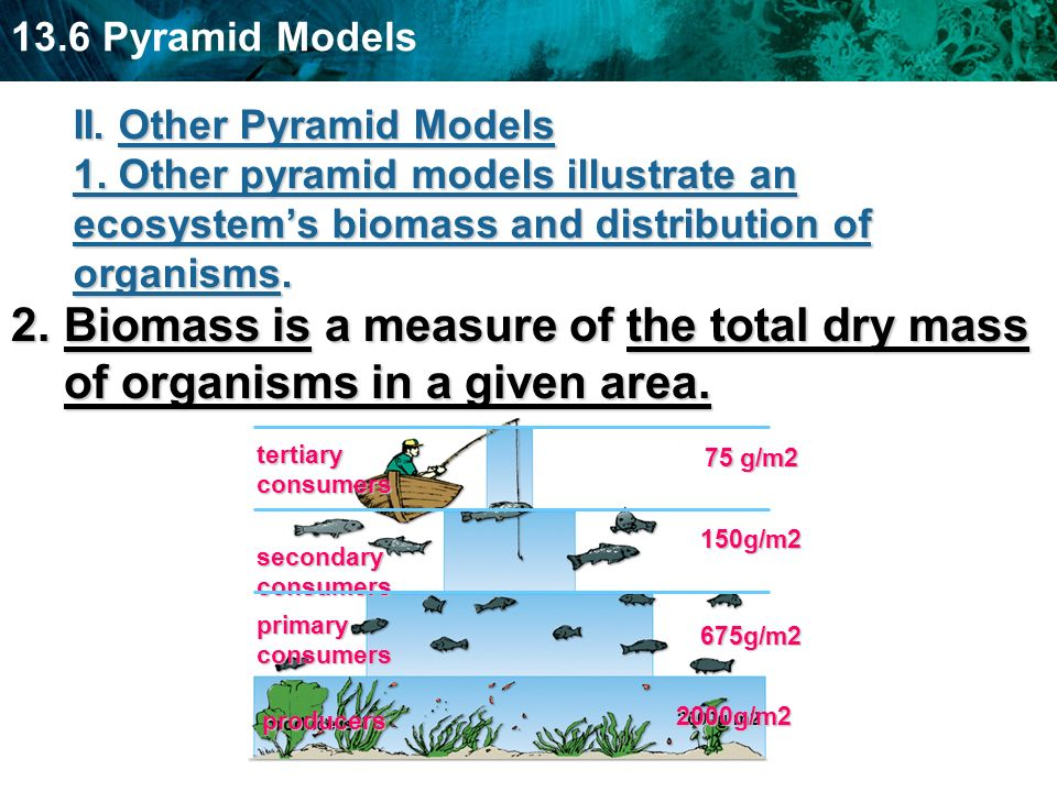 II. Other Pyramid Models 1