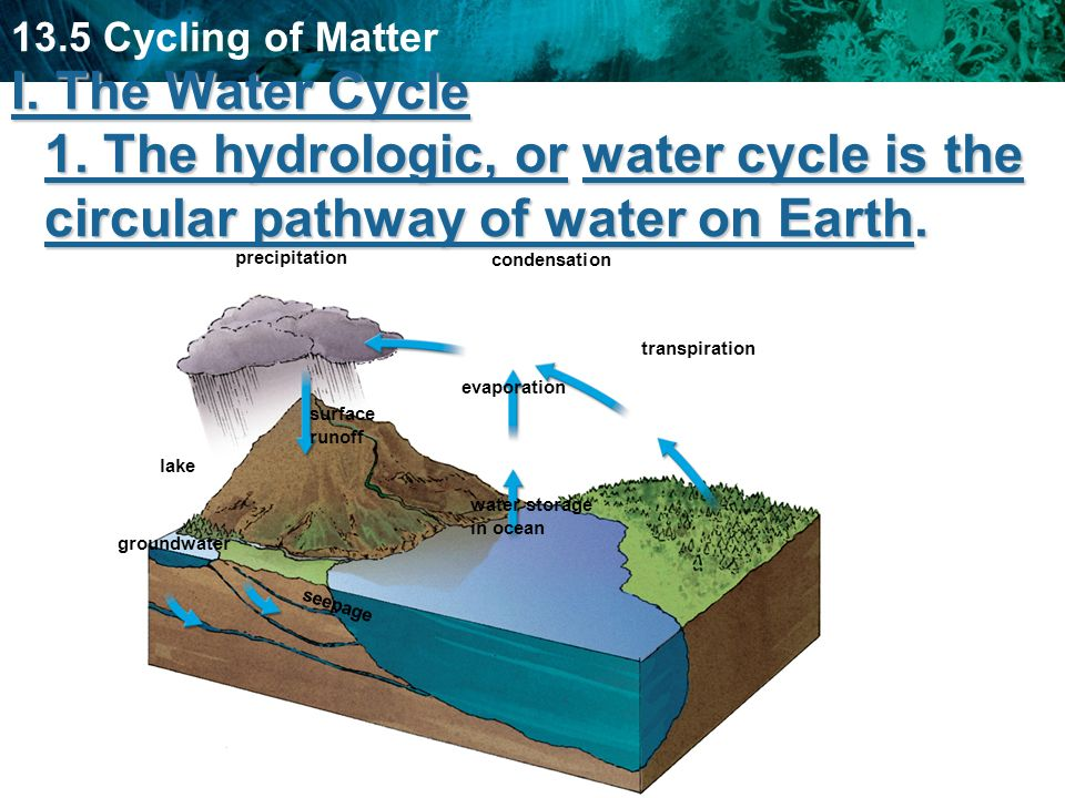 I. The Water Cycle 1. The hydrologic, or water cycle is the circular pathway of water on Earth.