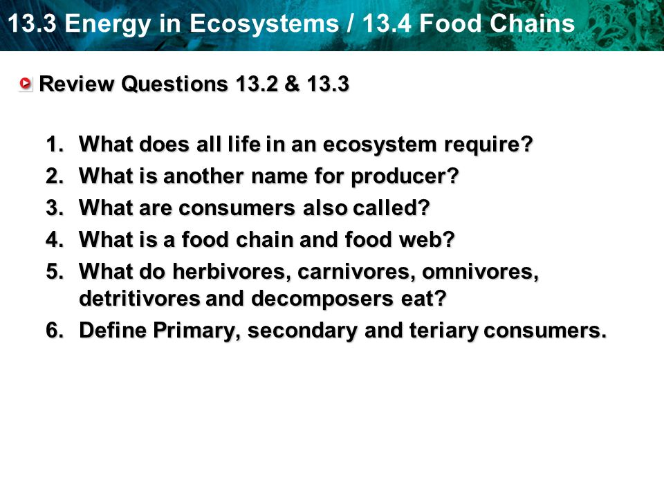 Review Questions 13.2 & 13.3 What does all life in an ecosystem require What is another name for producer