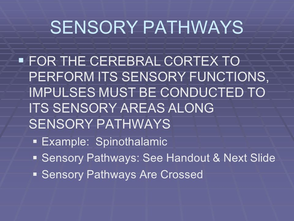 SENSORY PATHWAYS FOR THE CEREBRAL CORTEX TO PERFORM ITS SENSORY FUNCTIONS, IMPULSES MUST BE CONDUCTED TO ITS SENSORY AREAS ALONG SENSORY PATHWAYS.