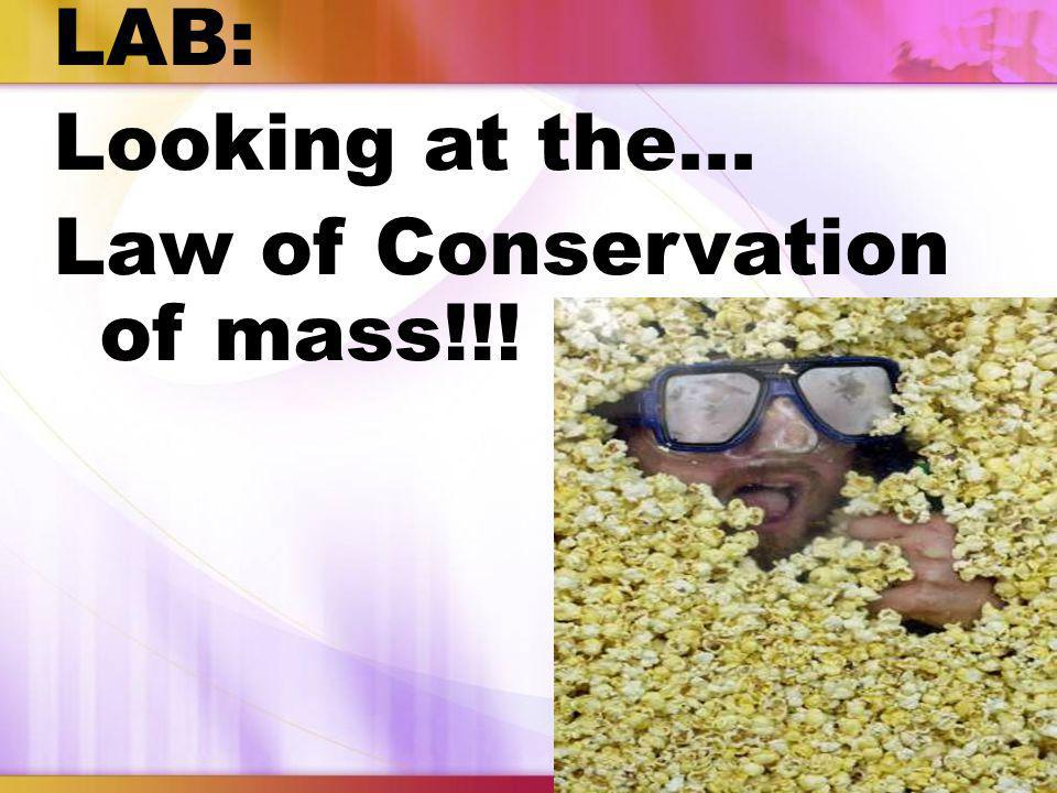 LAB: Looking at the… Law of Conservation of mass!!!