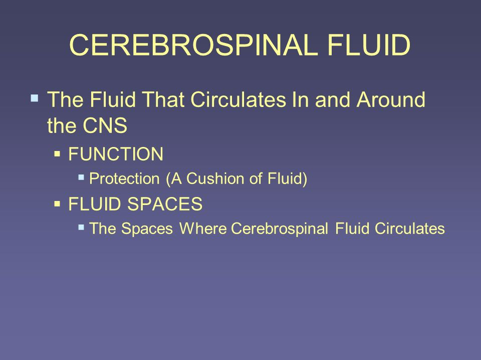 CEREBROSPINAL FLUID The Fluid That Circulates In and Around the CNS