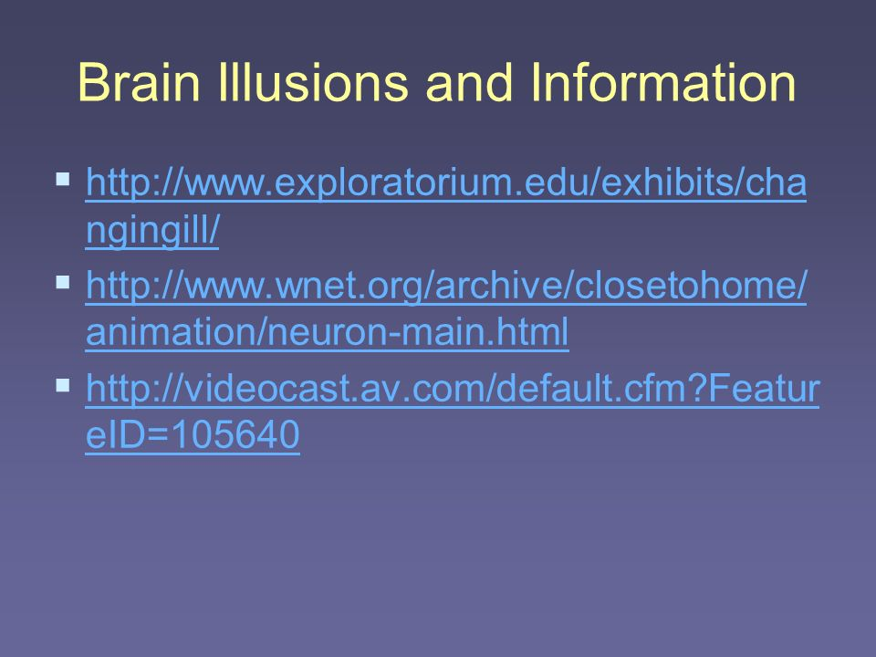 Brain Illusions and Information