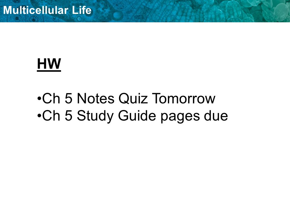 HW Ch 5 Notes Quiz Tomorrow Ch 5 Study Guide pages due