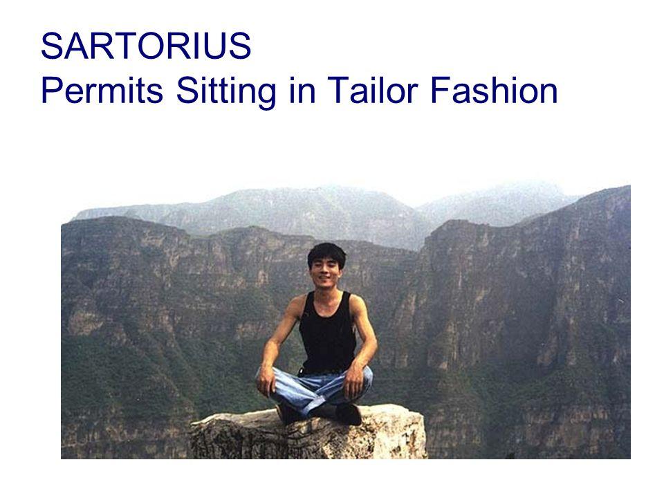 SARTORIUS Permits Sitting in Tailor Fashion