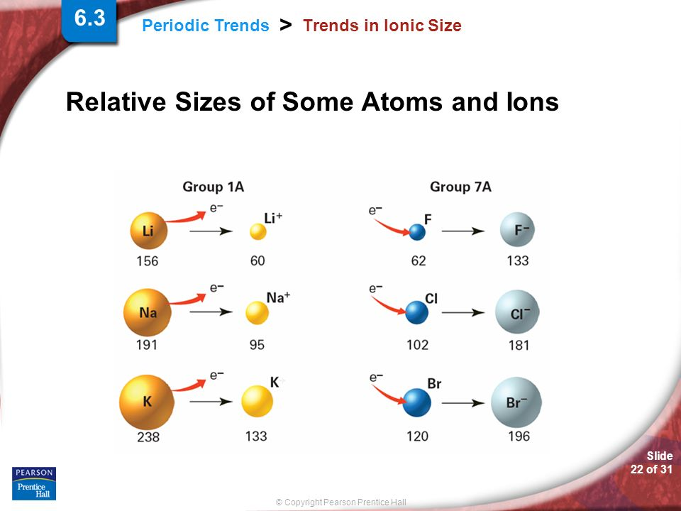 Relative Sizes of Some Atoms and Ions