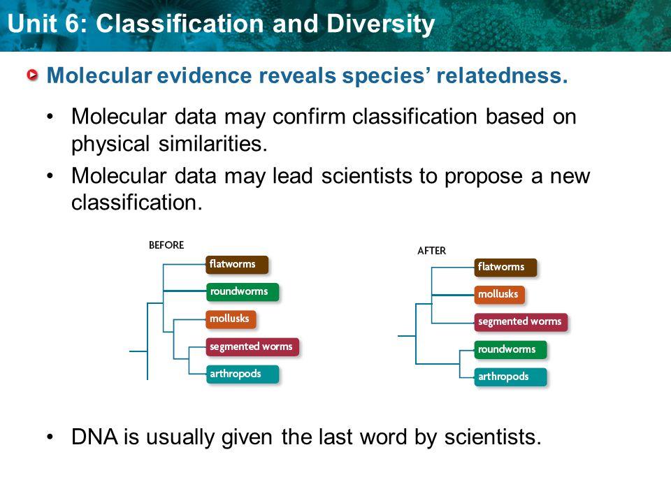 Molecular evidence reveals species' relatedness.