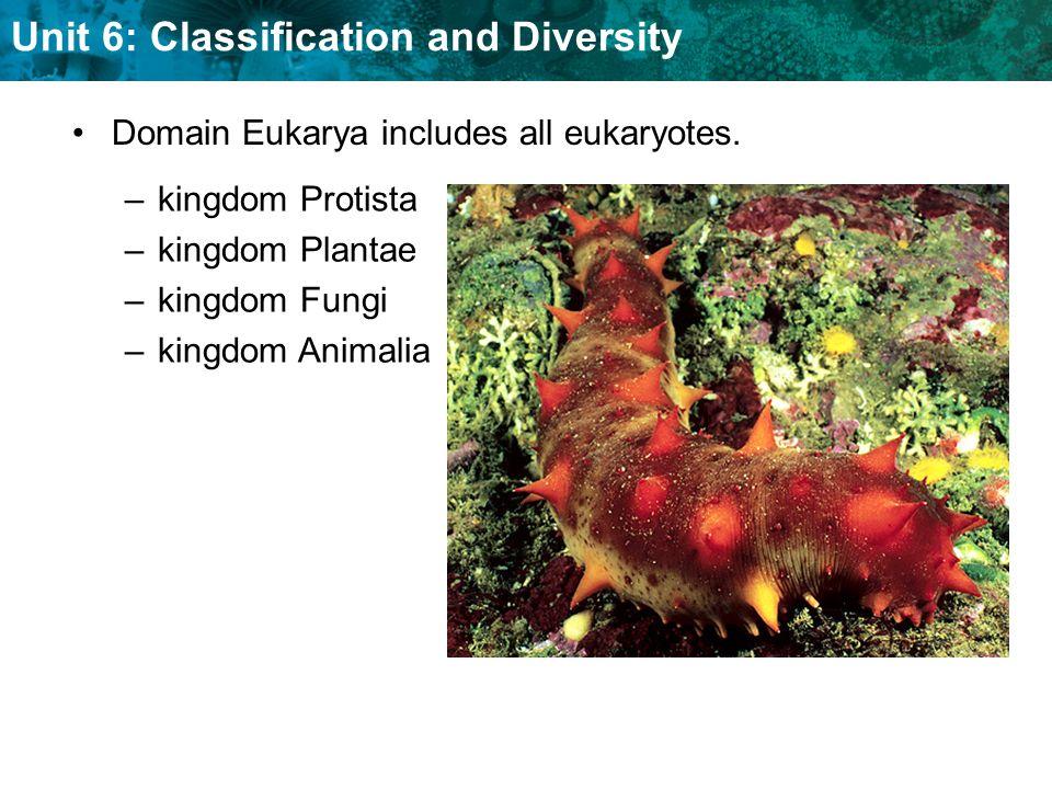 Domain Eukarya includes all eukaryotes.