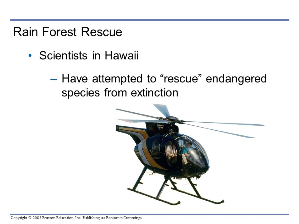 Rain Forest Rescue Scientists in Hawaii