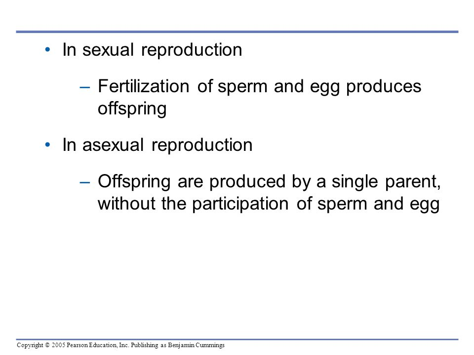 In sexual reproduction