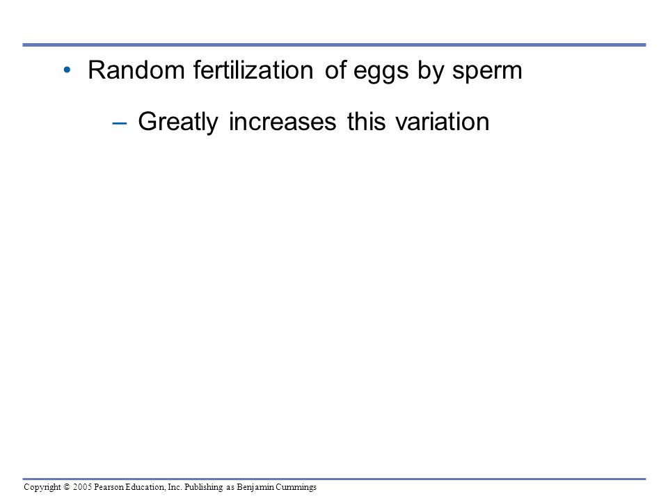 Random fertilization of eggs by sperm