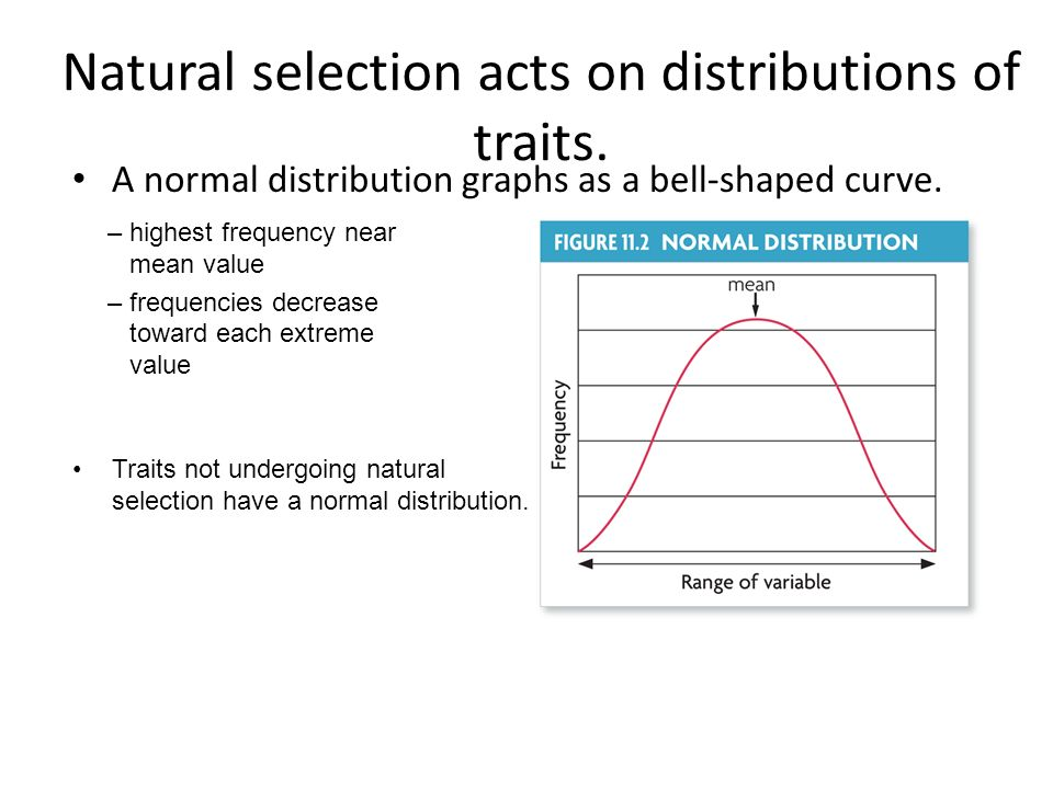 Natural selection acts on distributions of traits.