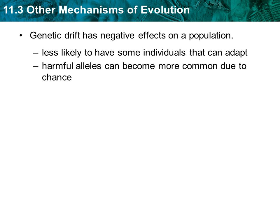 Genetic drift has negative effects on a population.