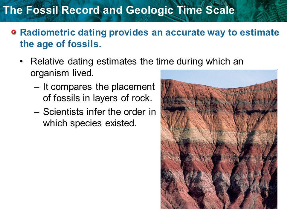 How do scientists use carbon dating to estimate the age of fossils