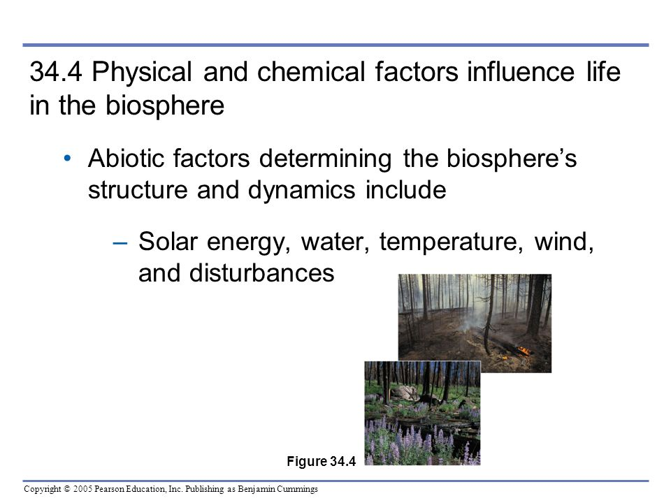 34.4 Physical and chemical factors influence life in the biosphere