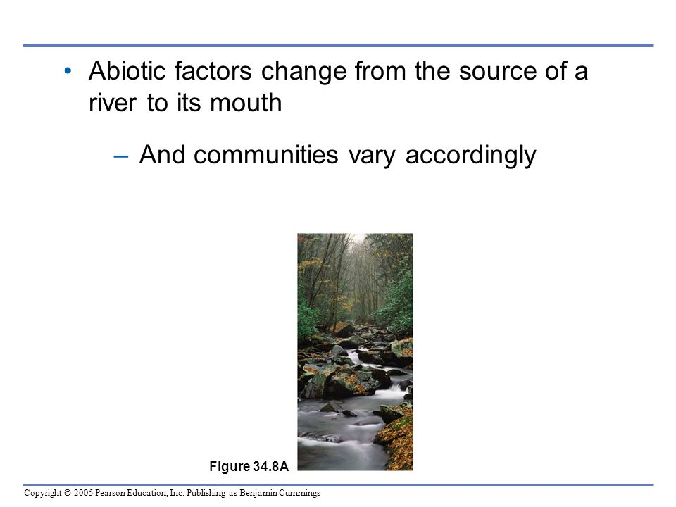 Abiotic factors change from the source of a river to its mouth