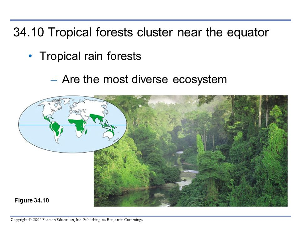 34.10 Tropical forests cluster near the equator