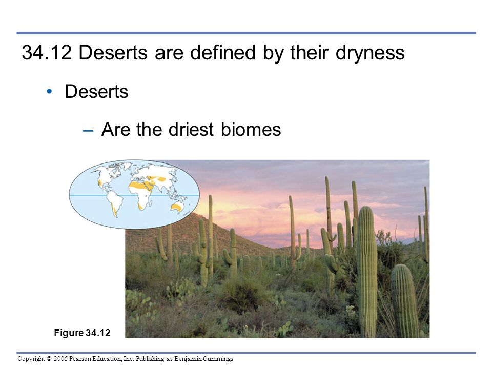 34.12 Deserts are defined by their dryness