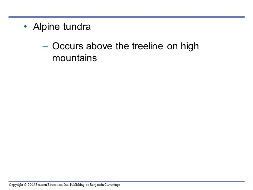 Alpine tundra Occurs above the treeline on high mountains
