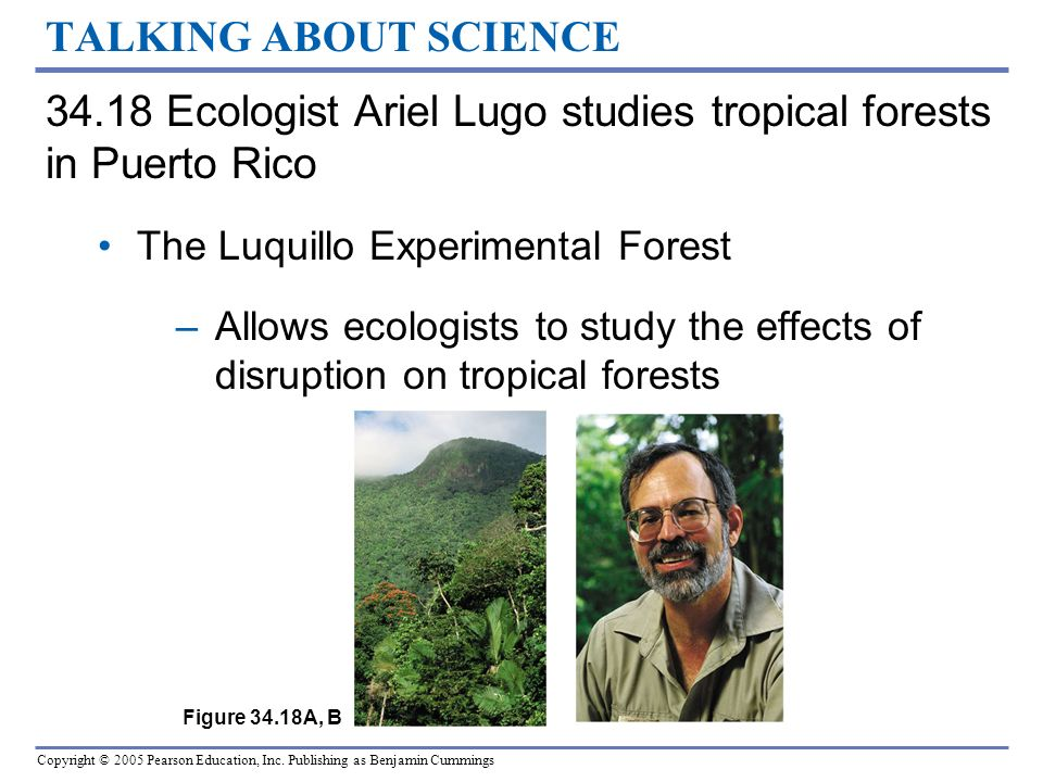34.18 Ecologist Ariel Lugo studies tropical forests in Puerto Rico