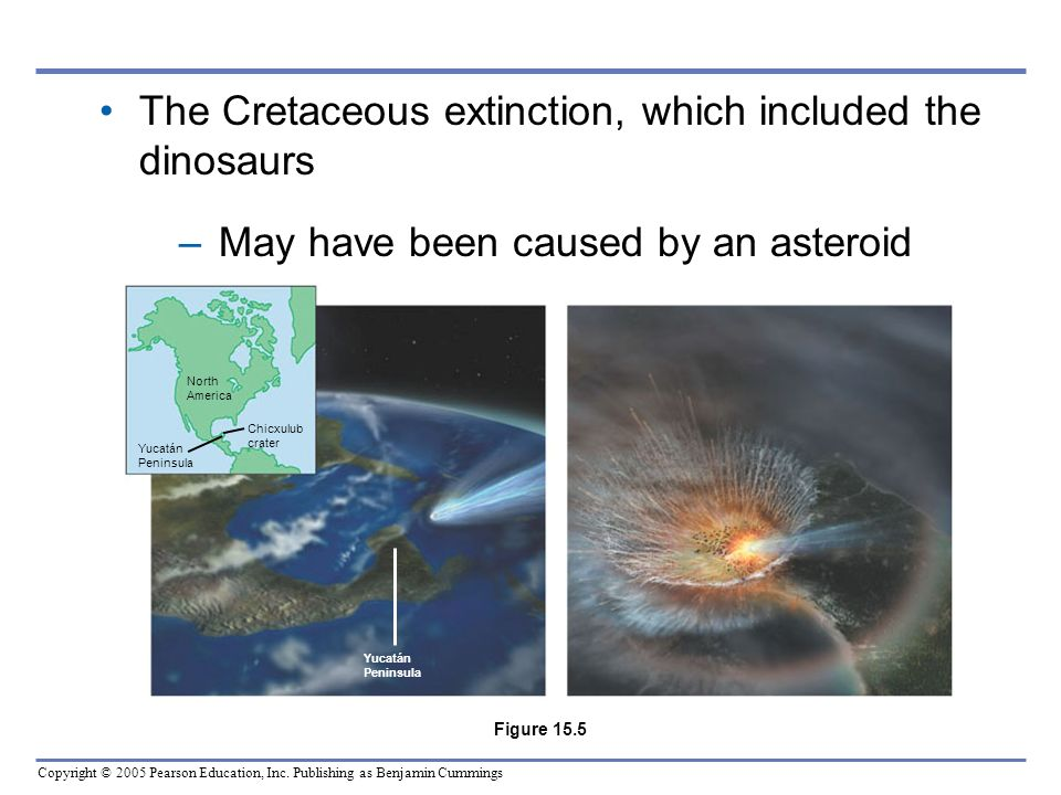The Cretaceous extinction, which included the dinosaurs