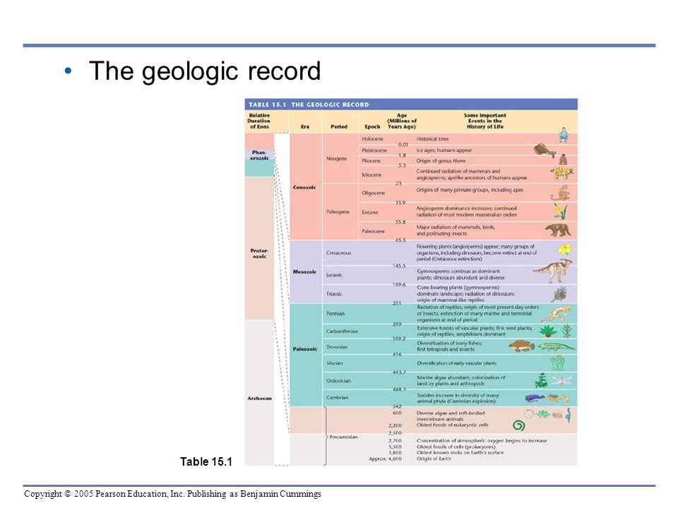 The geologic record Table 15.1