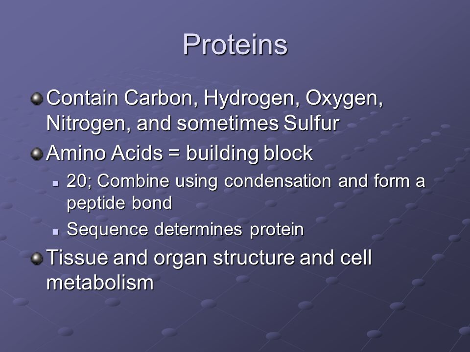 Proteins Contain Carbon, Hydrogen, Oxygen, Nitrogen, and sometimes Sulfur. Amino Acids = building block.