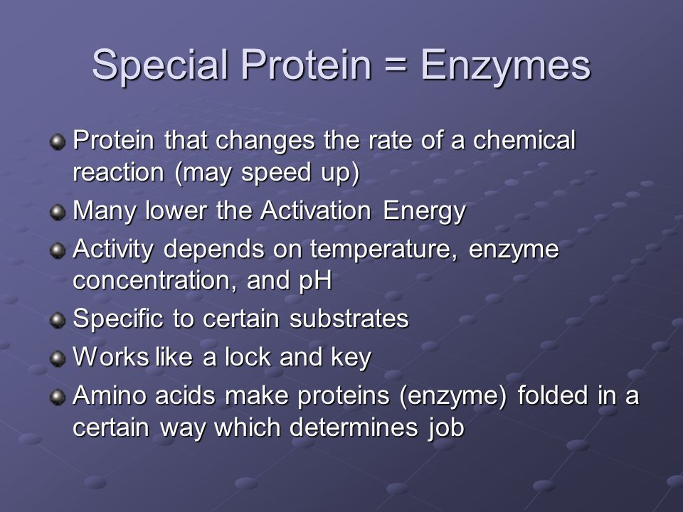 Special Protein = Enzymes