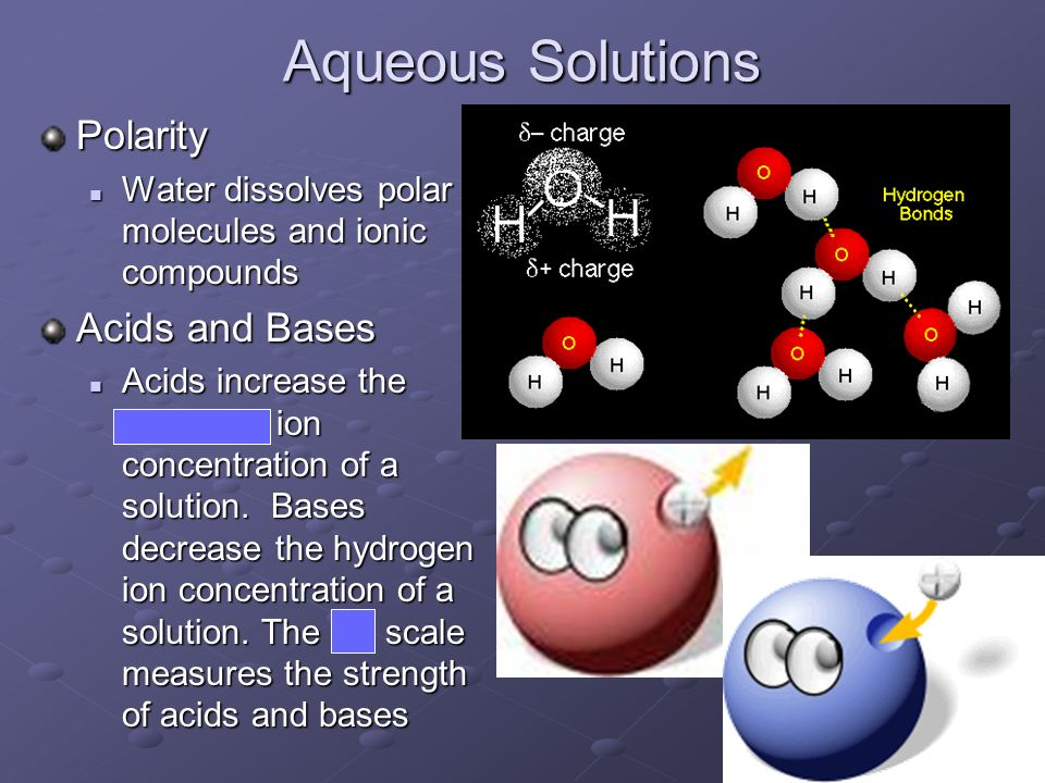 Aqueous Solutions Polarity Acids and Bases