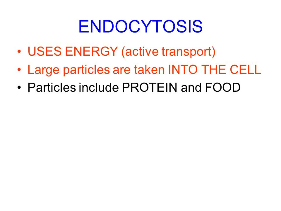 ENDOCYTOSIS USES ENERGY (active transport)