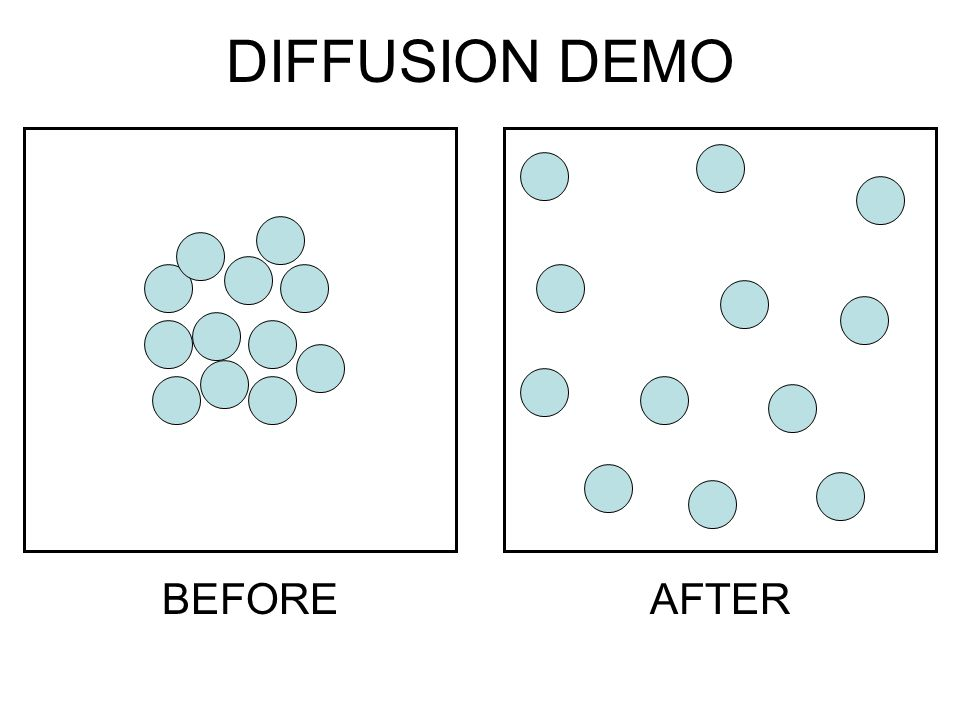 DIFFUSION DEMO BEFORE AFTER