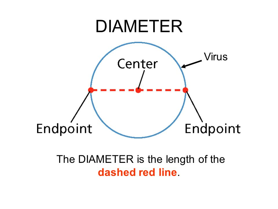 The DIAMETER is the length of the